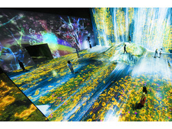 「MORI Building DIGITAL ART MUSEUM(teamLab Borderless)」のイメージ